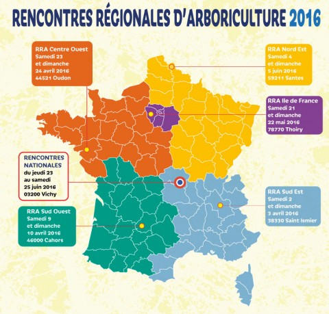 Rencontres Nationales des Arboristes-grimpeurs (RNA) à Vichy (03)